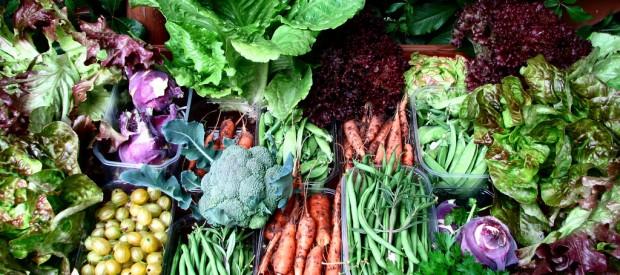 vegetables-620x275